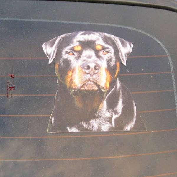 Auto-Aufkleber mit Hunde-Fotos