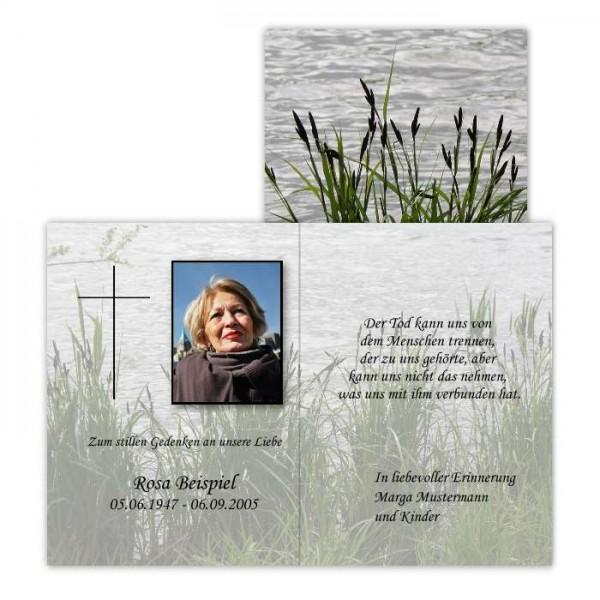 Traueranzeigen mit Foto des Verstorbenen - Motiv Schilf
