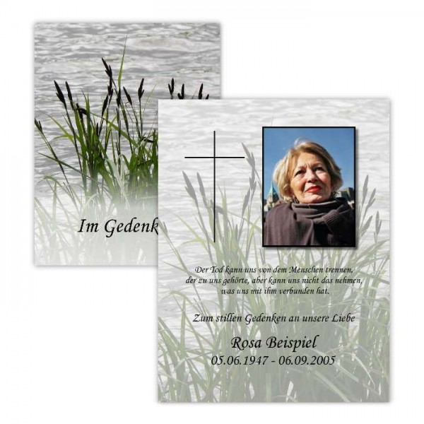 """Trauerandenken mit Foto des Verstorbenen - Motiv """"Schilf"""""""